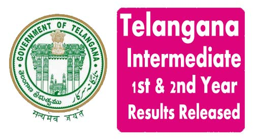 TS Inter Results 2020 1st, 2nd Year TSBIE.cgg.gov.in