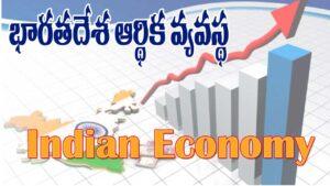 Indian Economy in Telugu